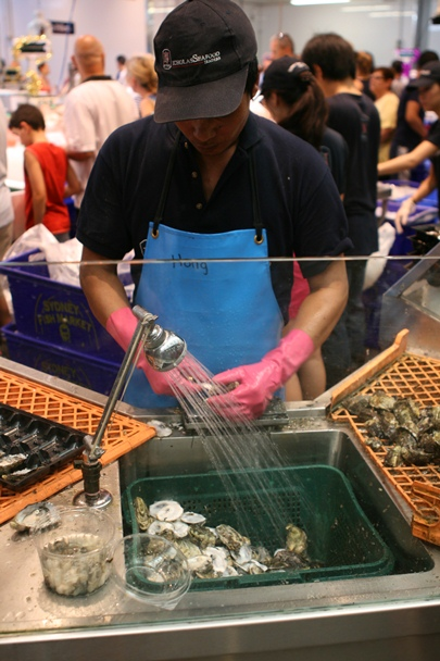 Sydney Christmas 2012 - Fish Markets #5