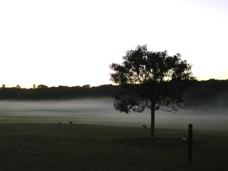 Cycling Sunrise - #1