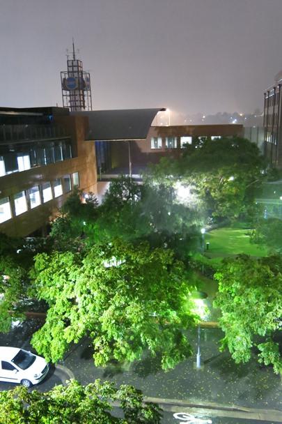 Cyclone Oswald Rain Storm - Sydney - #2
