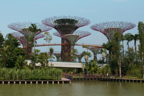 Singapore_12-#01