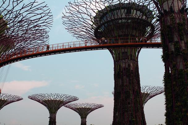 Singapore_12-#02