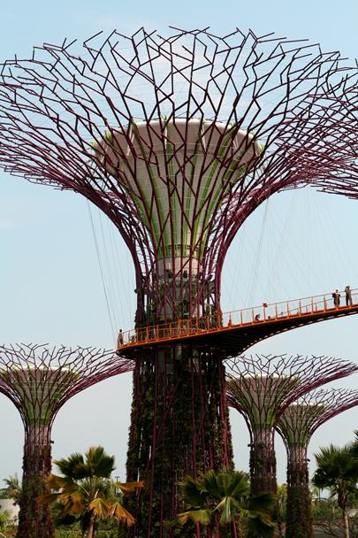 Singapore_12-#04
