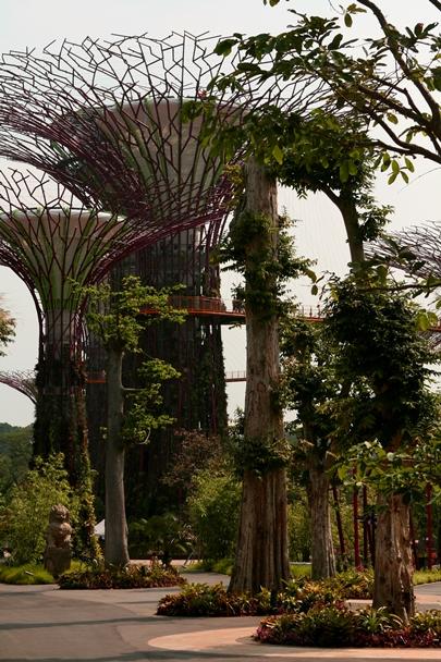 Singapore_12-#06