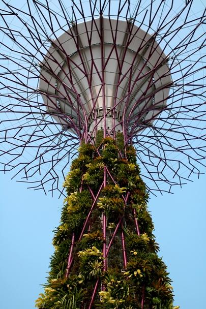 Singapore_12-#07