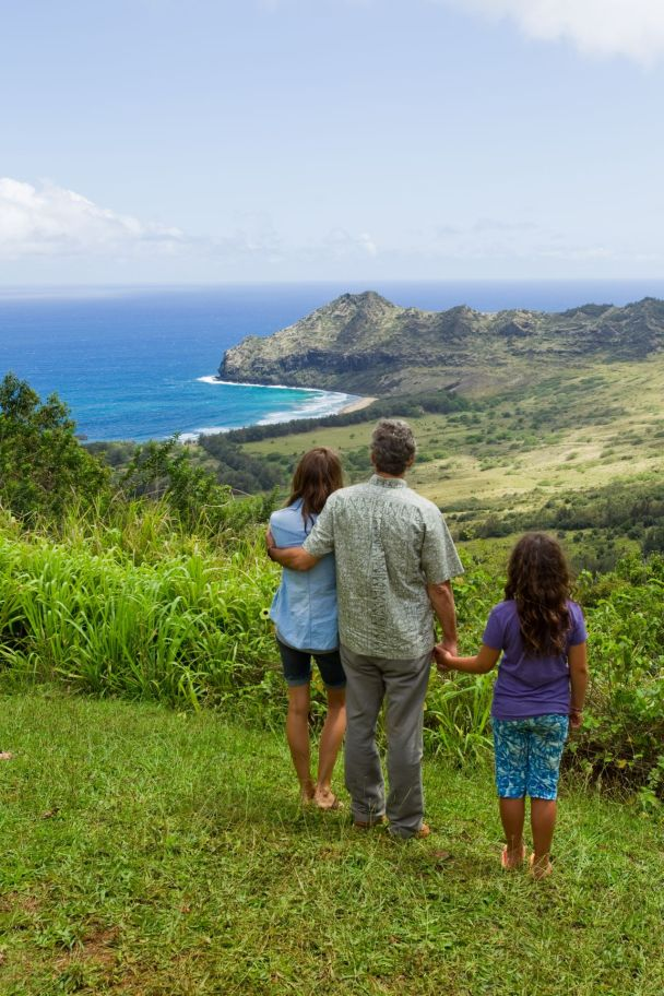 The Descendants - valley at Kauai