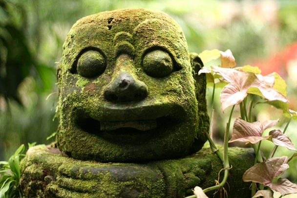 Singapore Botanic Gardens #08