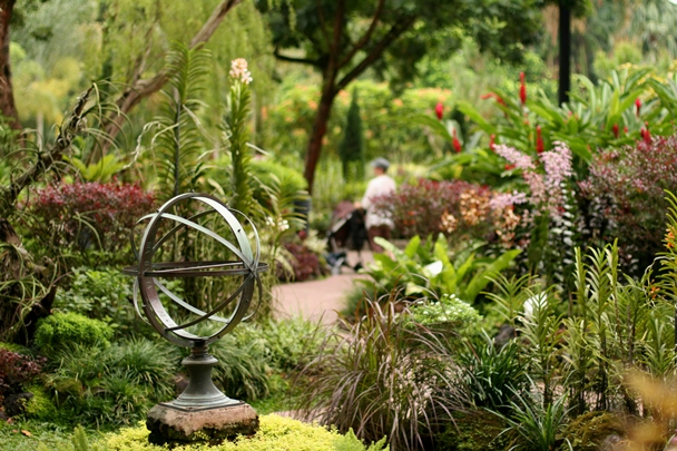 Singapore Botanic Gardens #12