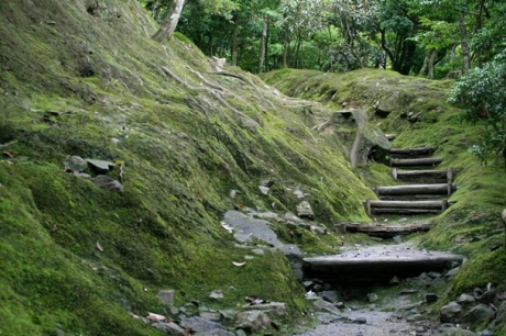 Travel Theme - Pathways - Kyoto