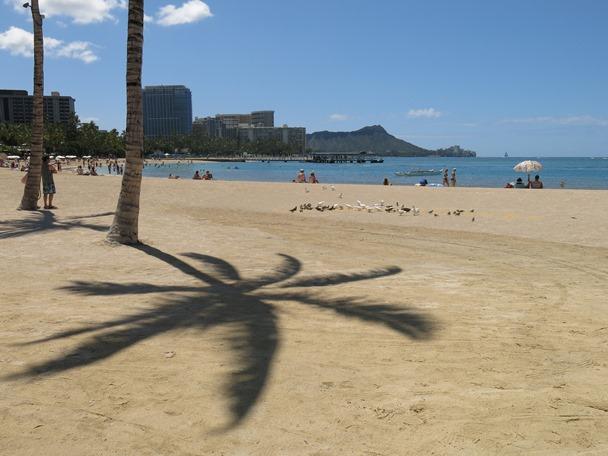 Oahu Honolulu - #1