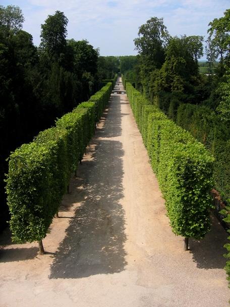 Travel Theme - Pathways - Versailles