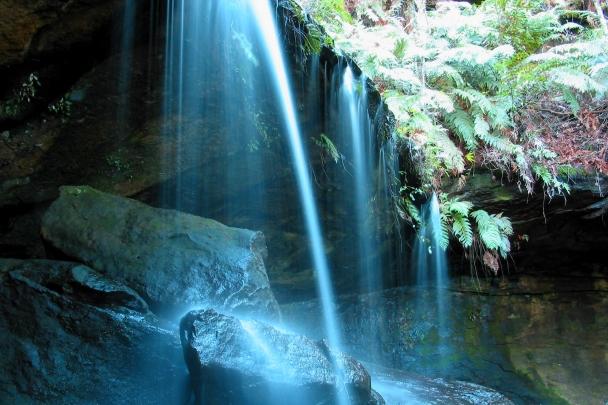Fitzroy_Falls_2749