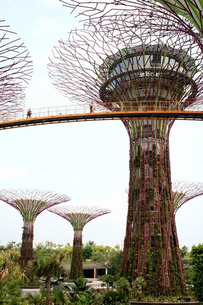 Singapore_2012_0088ps