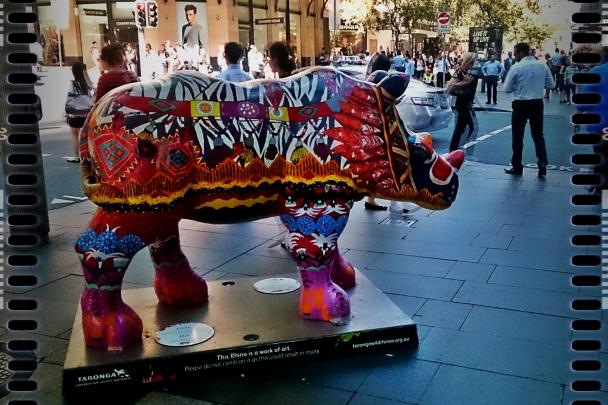 Rhino005