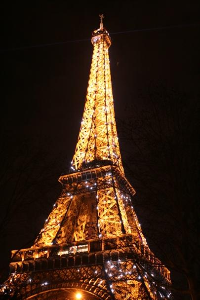 Paris_20150110_0077